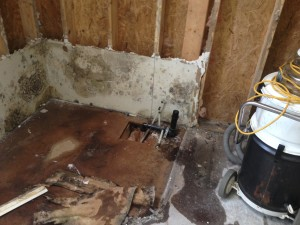 mold in home reconstruction MI