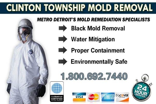 clinton twp mi mold removal