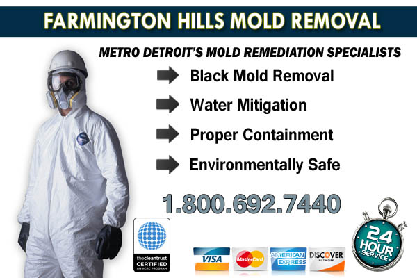 farmington hills mi mold removal services