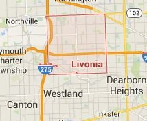 livonia mi mold remediation and removal