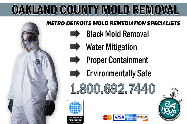 oakland county MI black mold removal