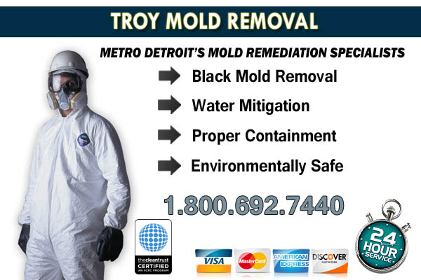 troy mi mold removal
